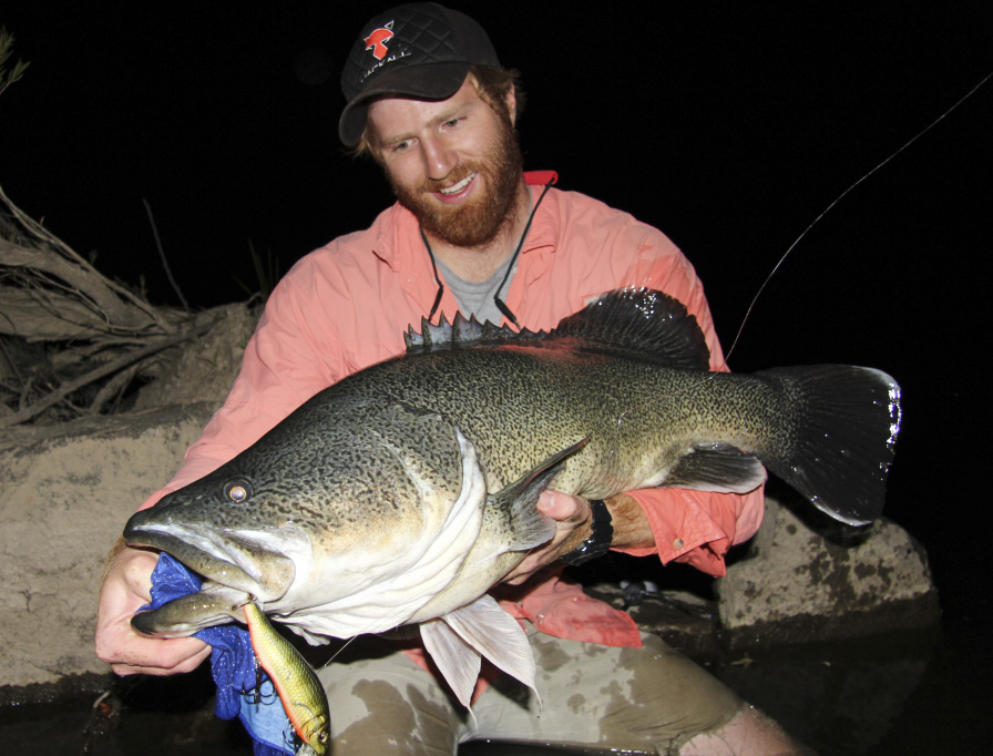 Rory Holds a Meter of Murray cod moments after it slammed his topwater lure in the dark.