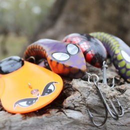 A selection of Large Lures inteded for Murray Cod