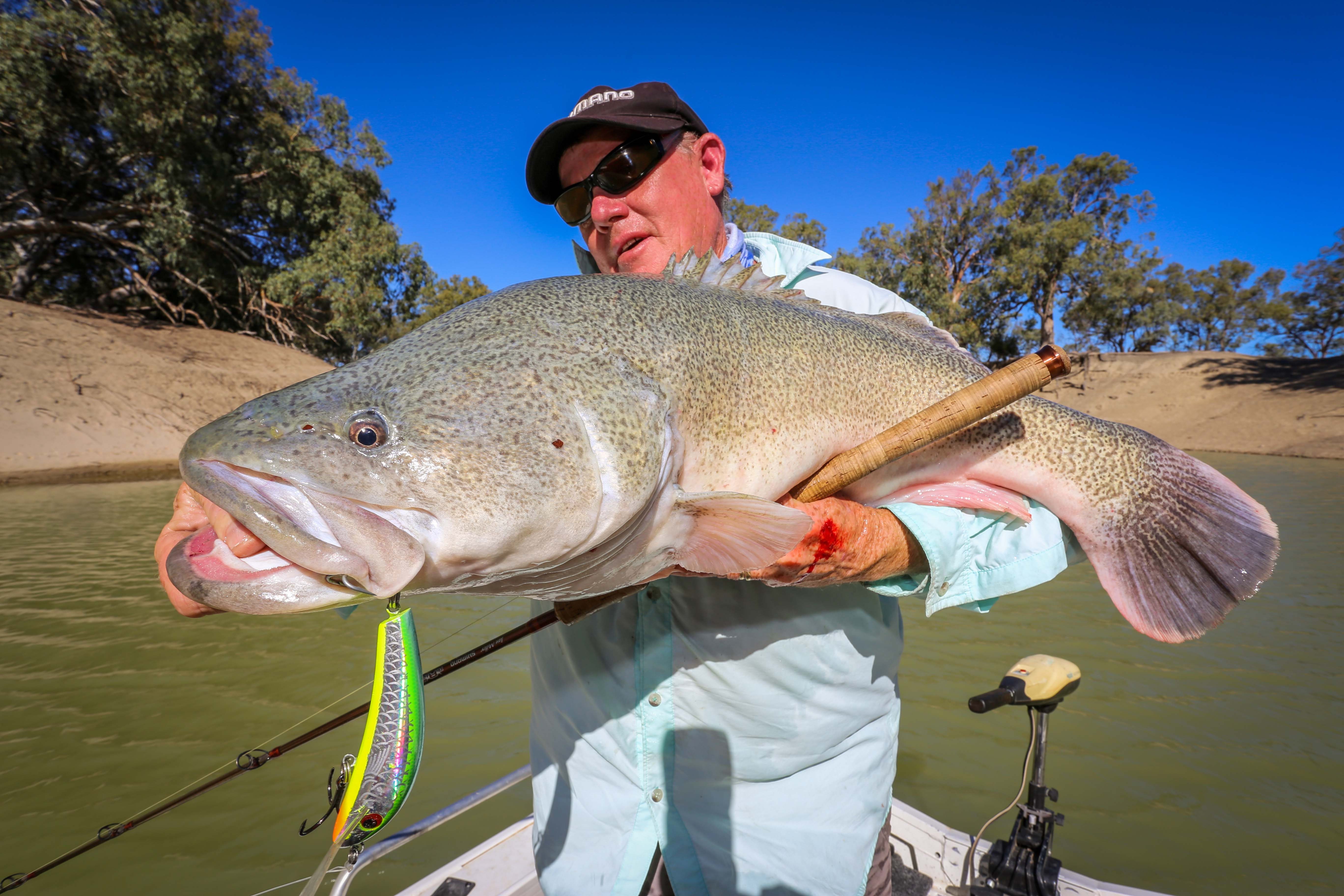 Freshwater fish magazine -  We Ll Give It An Hour